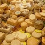 Conosciamo i formaggi