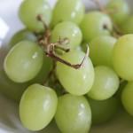 Viva la vendemmia: il menu a base d'uva